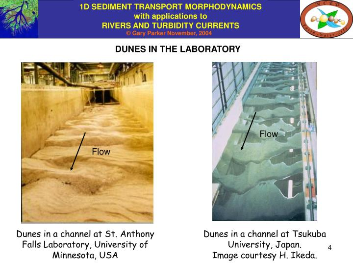 DUNES IN THE LABORATORY