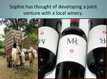 sophie has thought of developing a joint venture with a local winery