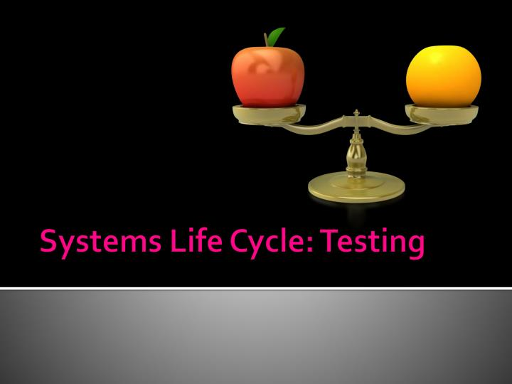 systems life cycle testing n.