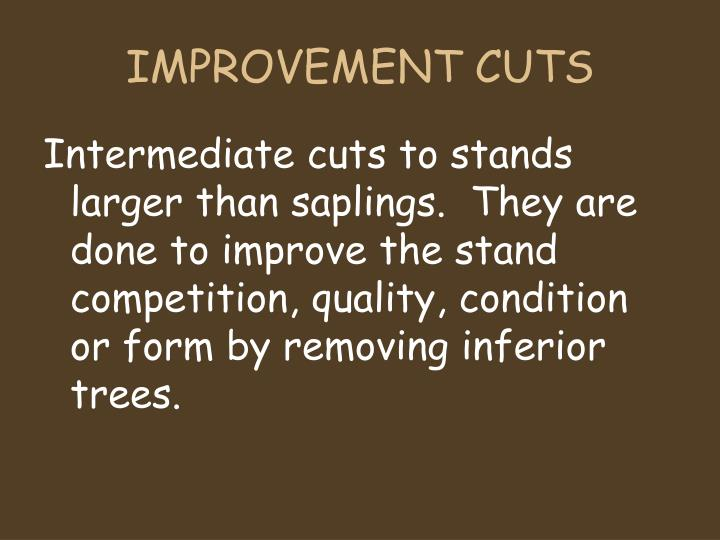 IMPROVEMENT CUTS