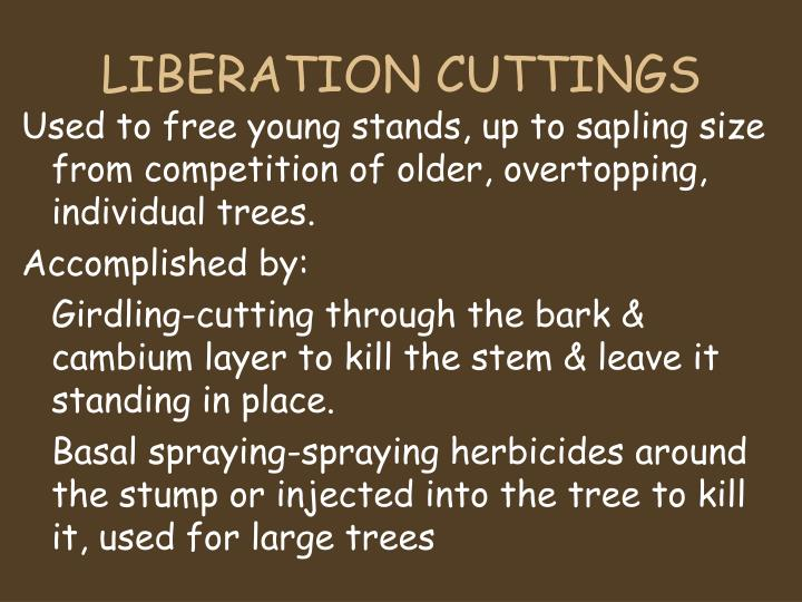 LIBERATION CUTTINGS