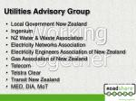 utilities advisory group