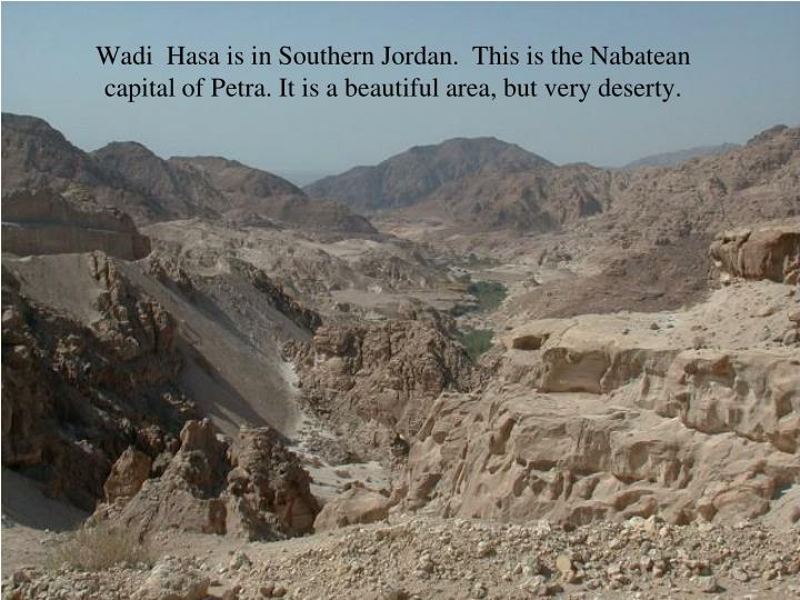 Wadi  Hasa is in Southern Jordan.  This is the Nabatean capital of Petra. It is a beautiful area, but very deserty.