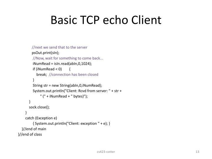 Basic TCP echo Client