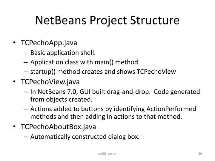 NetBeans Project Structure