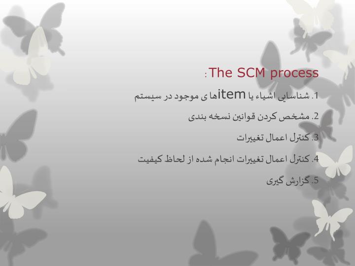 The SCM process