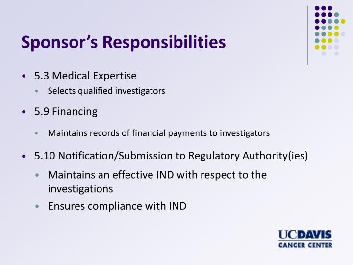 Sponsor's Responsibilities