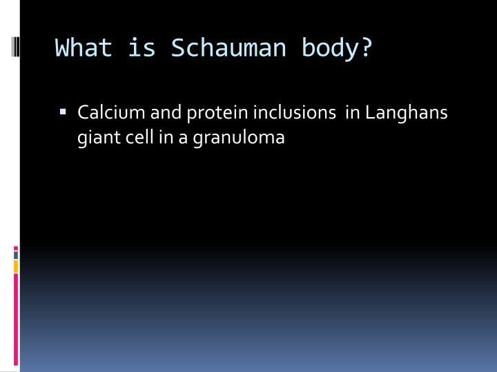 What is Schauman body?
