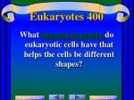 eukaryotes 400