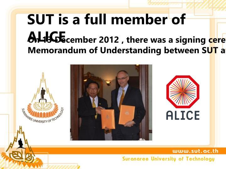 Sut is a full member of alice
