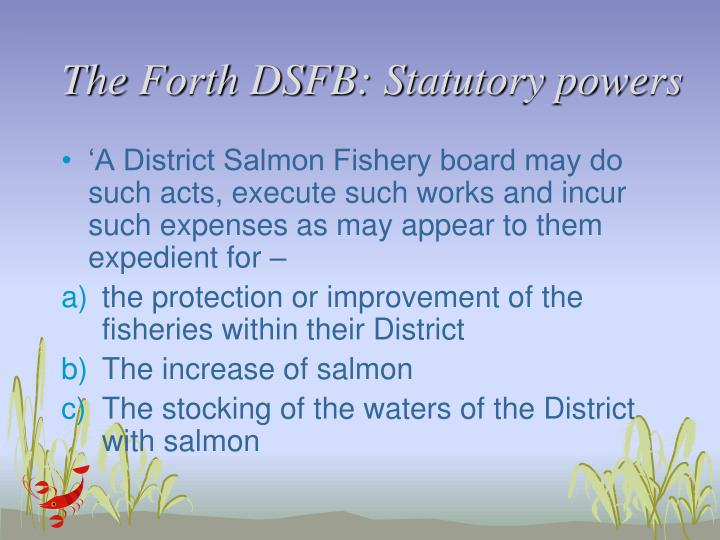The Forth DSFB: Statutory powers