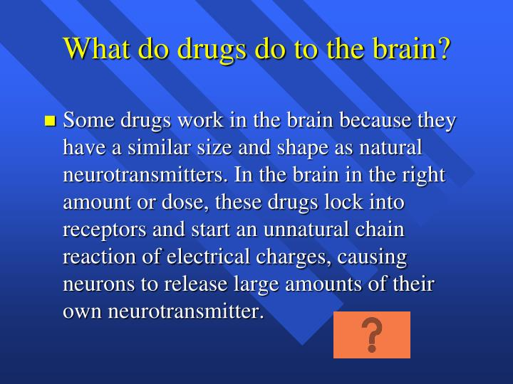 What do drugs do to the brain?