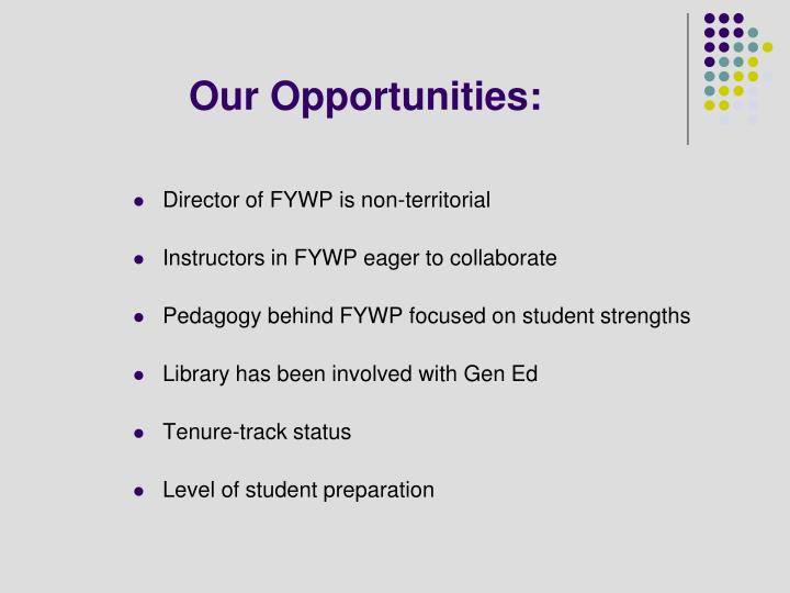 Our Opportunities: