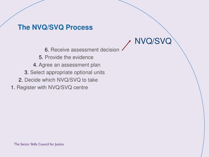 The NVQ/SVQ Process