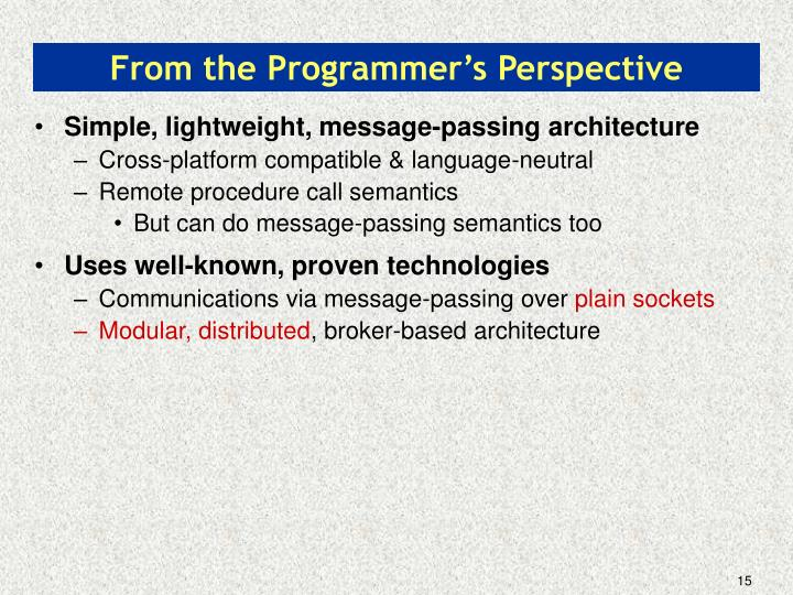From the Programmer's Perspective