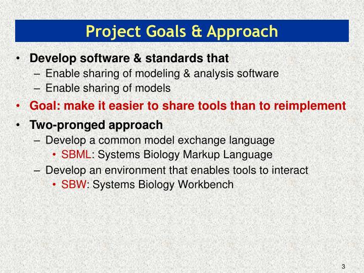 Project goals approach