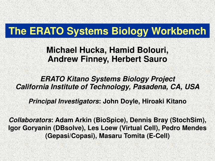 the erato systems biology workbench n.