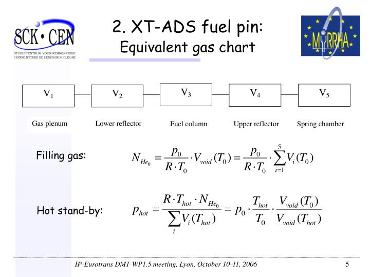 2. XT-ADS fuel pin: