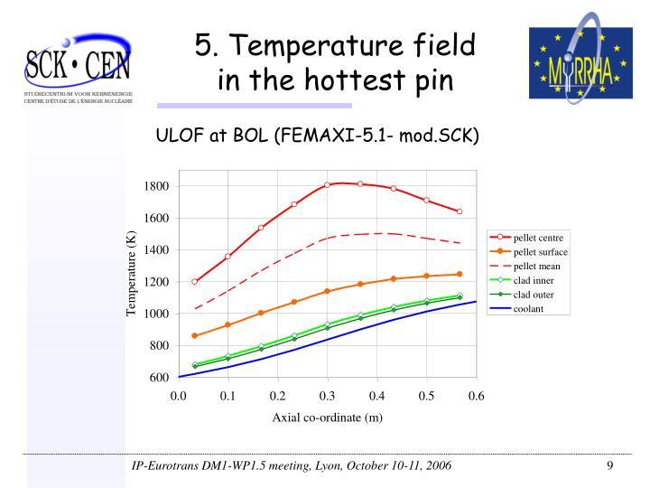 5. Temperature field