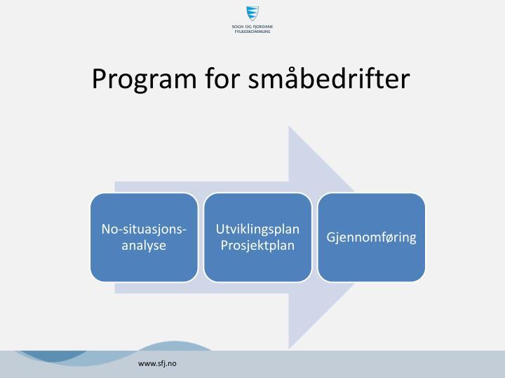 Program for småbedrifter