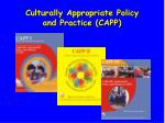 culturally appropriate policy and practice capp