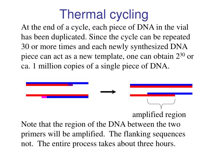 Thermal cycling