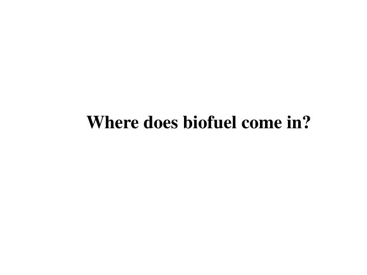 Where does biofuel come in?