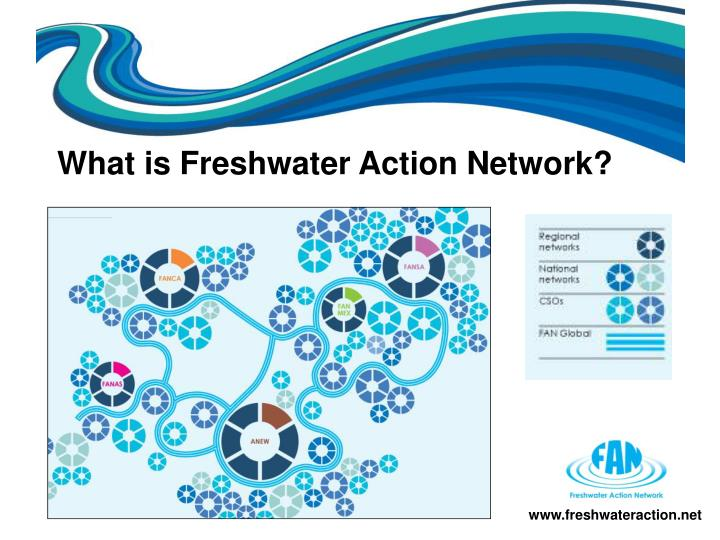 What is Freshwater Action Network?