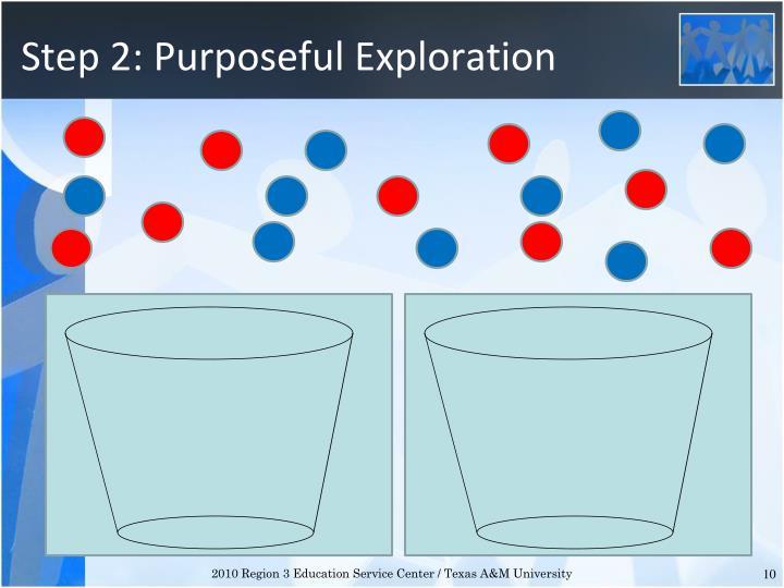 Step 2: Purposeful Exploration