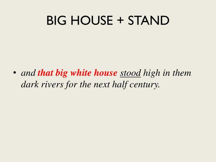 BIG HOUSE + STAND