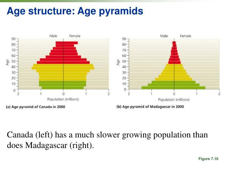 Age structure: Age pyramids