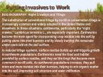 putting invasives to work