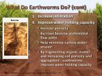 what do earthworms do cont1