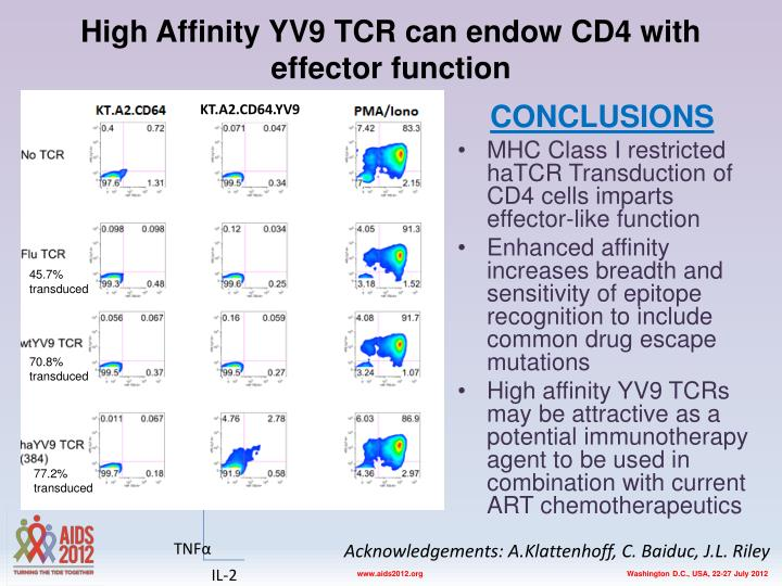 High affinity yv9 tcr can endow cd4 with effector functio n