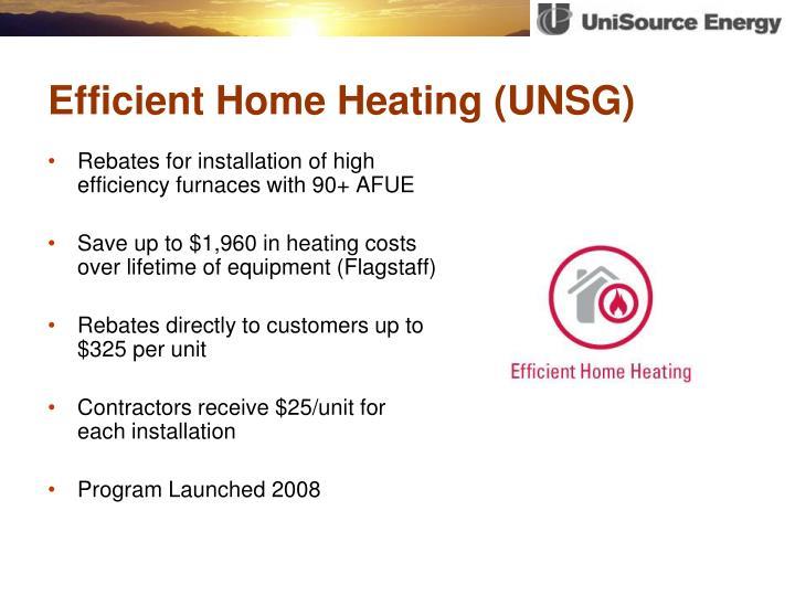 Efficient Home Heating (UNSG)