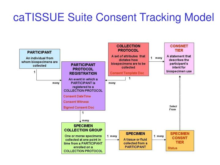caTISSUE Suite Consent Tracking Model