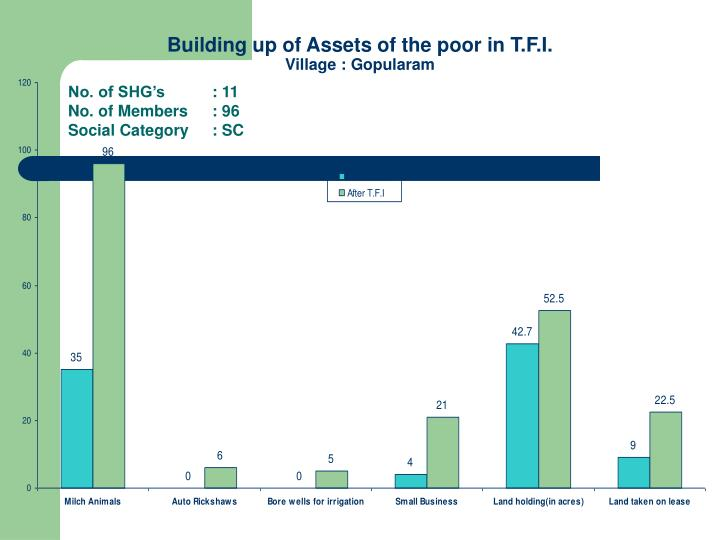 Building up of Assets of the poor in T.F.I.