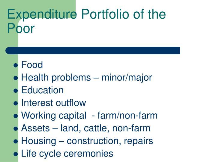 Expenditure Portfolio of the Poor