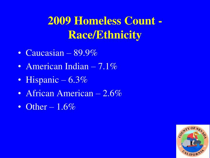 2009 Homeless Count - Race/Ethnicity