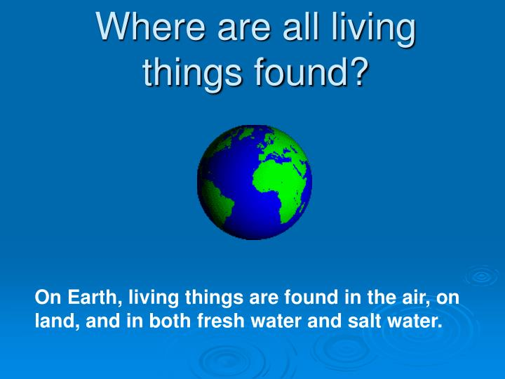 Where are all living things found?
