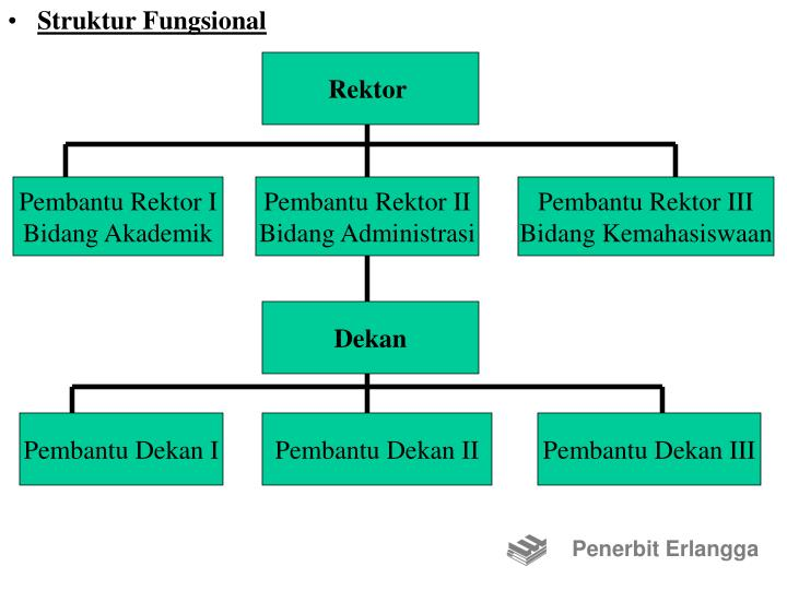 Struktur Fungsional