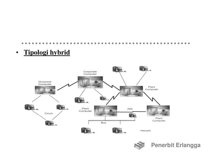 Tipologi hybrid