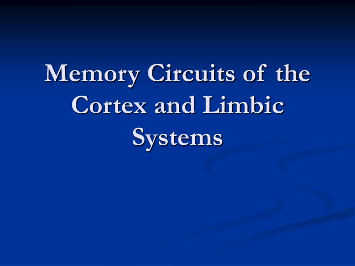 memory circuits of the cortex and limbic systems n.