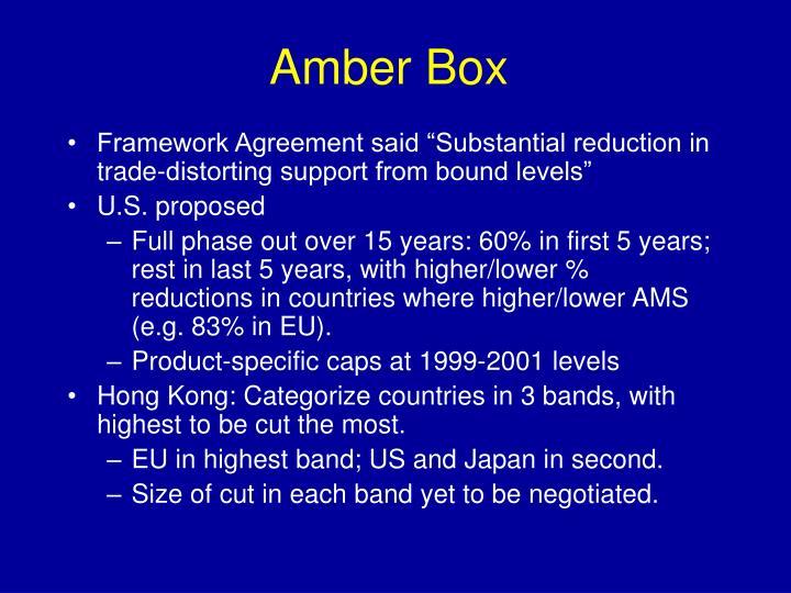 Amber Box