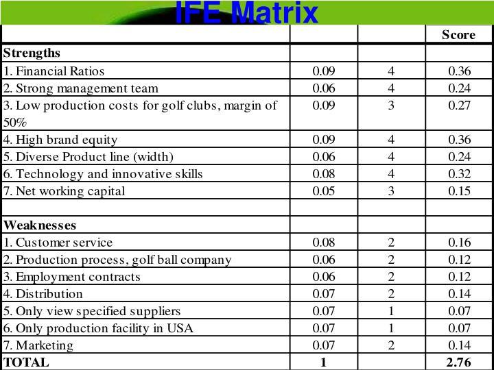 Perfect Ife Matrix Template Ornament - Examples Professional Resume ...