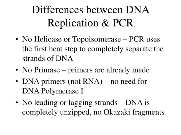 Differences between DNA Replication & PCR