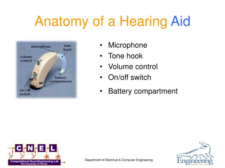 Anatomy of a Hearing