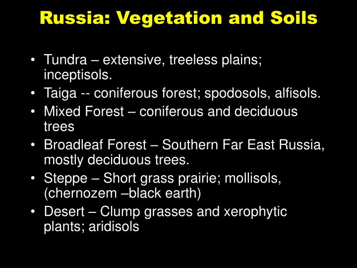 Russia: Vegetation and Soils