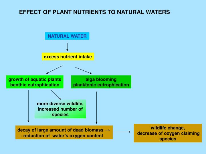 EFFECT OF PLANT NUTRIENTS TO NATURAL WATERS