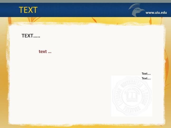 Text text text text